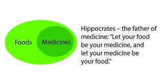 Hippocrates: The father of medicine